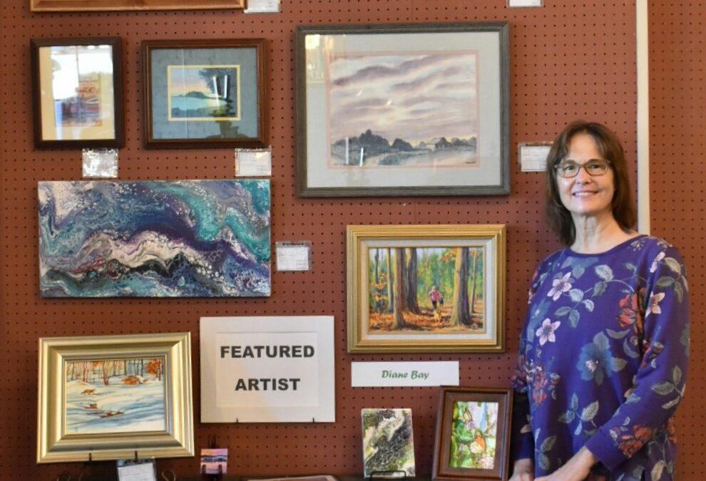 November 2020 Featured Artist – Diane Bay